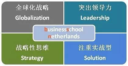 荷兰商学院BSN 荷兰商学院学位班 荷兰商学院MBA