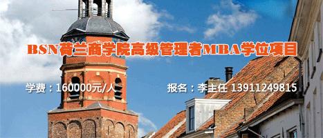 2020荷兰商学院BSN工商管理硕士MBA高级管理者招生简章